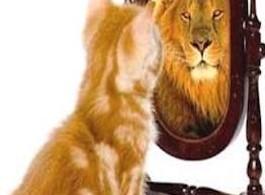 самоувереност self-confidence
